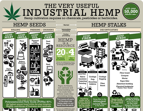 The very useful Industrial Hemp: Hemp cultivation requires no chemicals, pesticides or herbicides. Hemp Seeds: ..... Hemp Stalks: .....