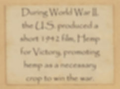 a statement: During World War II the .S. produced a sjprt 942 film Hemp for Victory, promoting hemp as a necessary crop to win the war.