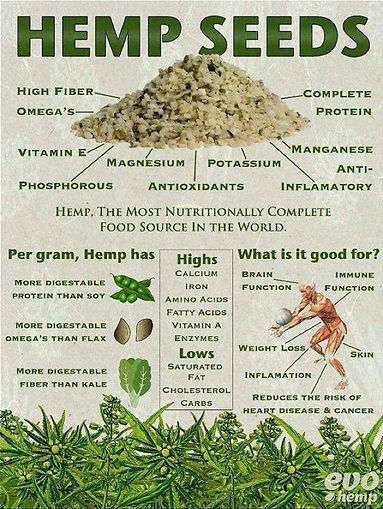 Image shows - Hemp seeds and what it contains. what it is good for, its benefits, its vitamins etc....