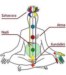 Subtle system showing Kundalini, Nadi, Atma, Sahasrara