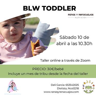 Copia de Taller blw Toddler (4).png