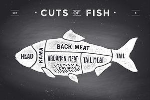 Fish Cuts JEPG.jpg