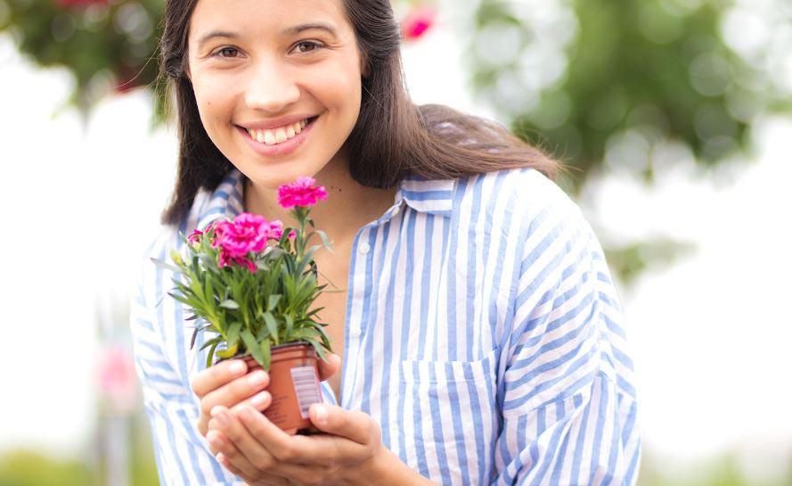 sadnice cvijeća online prodaja zagreb
