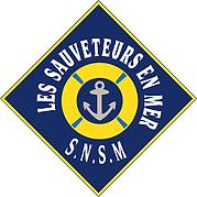 logo snsm.png