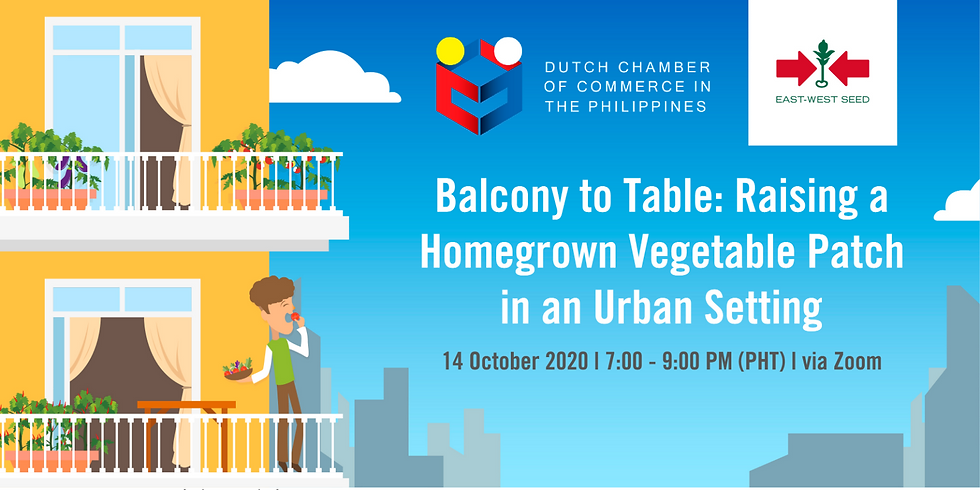 Balcony to Table: Raising a Homegrown Vegetable Patch in an Urban Setting