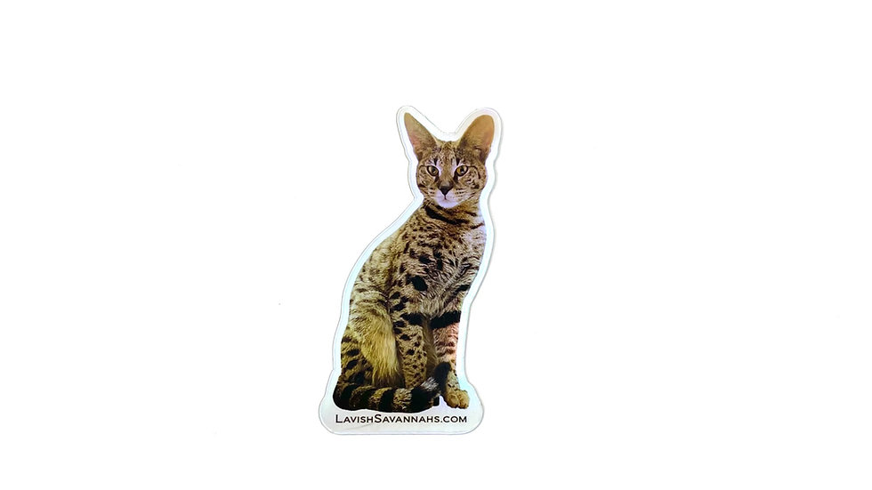 Pretty Kitty Nala Holographic Sticker