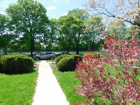 View from front door looking to Levin Park