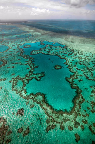 coral reefs seen from above