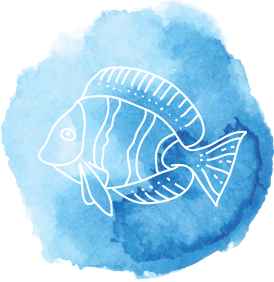 drawing of a fish in a blue background