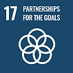 sustainable development goal 17 (partnerships for the goals)
