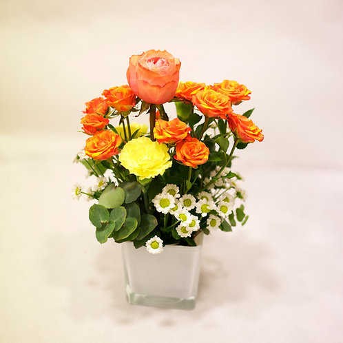 Rose ramificate e Garofani