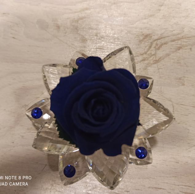 Rosa Stabilizzata Blu