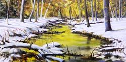 Bach im verschneiten Wald