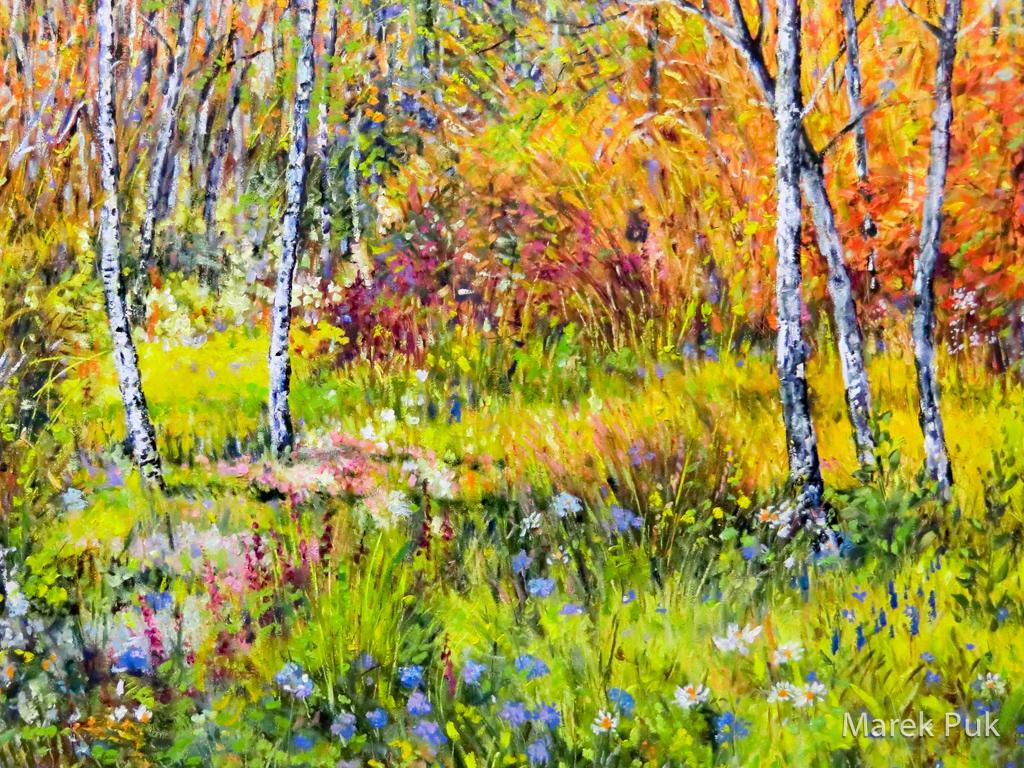 Herbstwald mit Birken