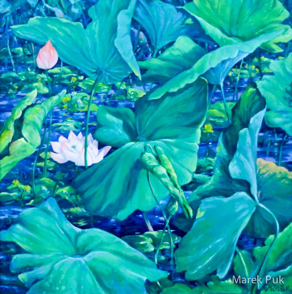 Lotusteich mit Blüten