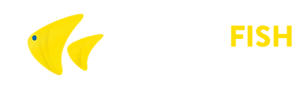 YellowFishTransfers-logo_2x.png