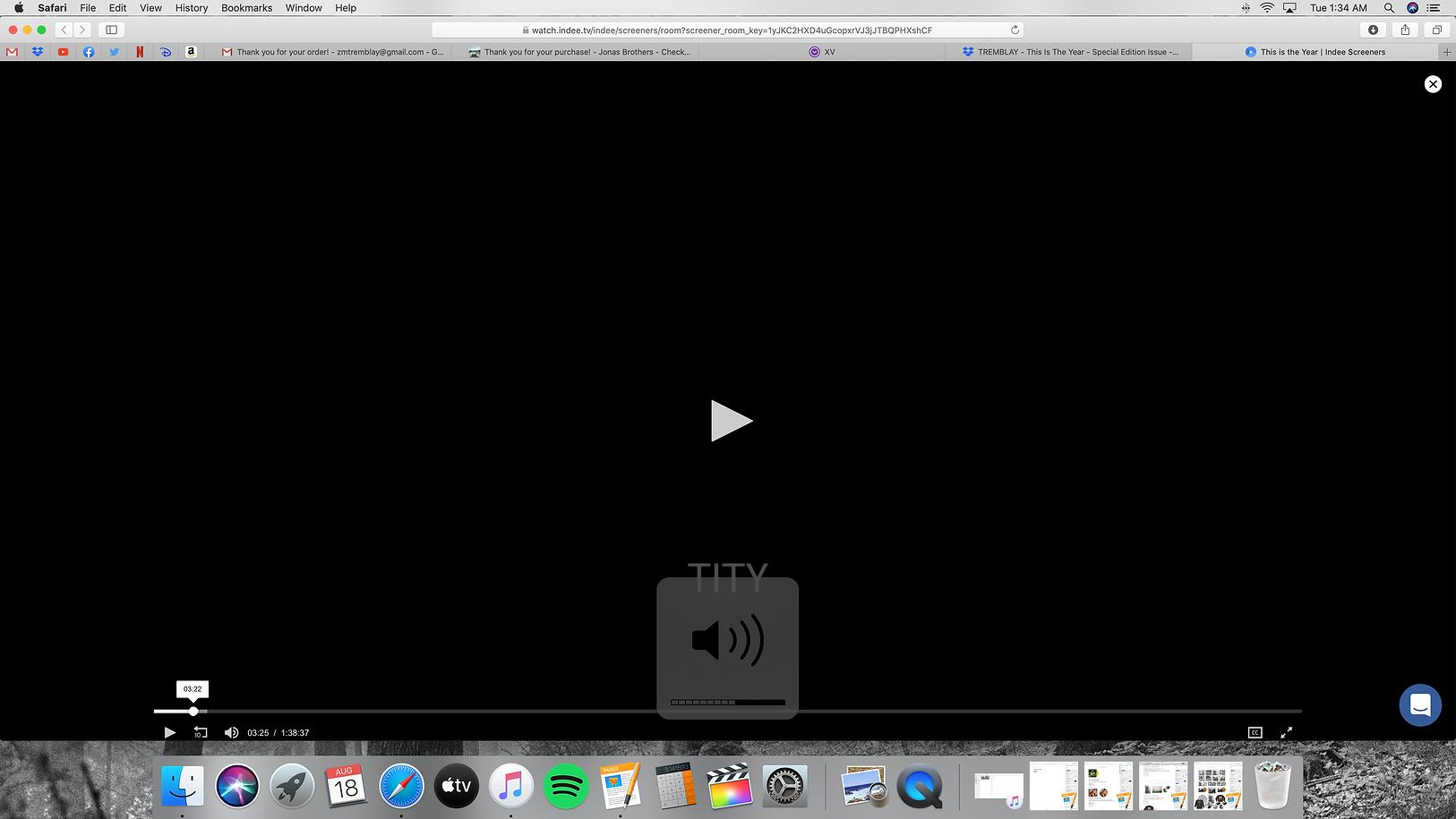 Screen Shot 2020-08-18 at 1.34.03 AM.png