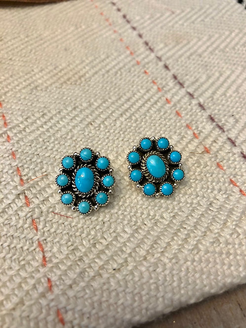 Round Cluster Turquoise Posts