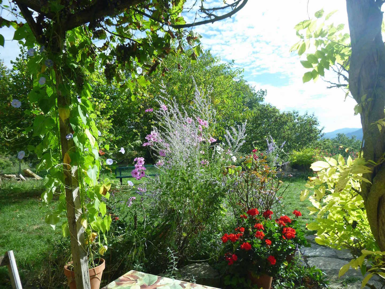 Terrasse du gîte sud et jardin