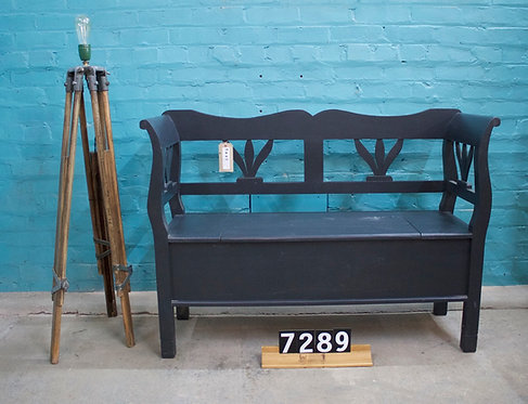 Painted Settle 7289