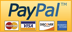 Download-PayPal-Donate-Button-PNG-Pic.pn