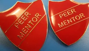 The Role of the Peer Mentor