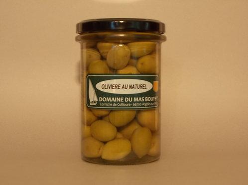 Olives  vertes olivières