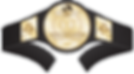 kisspng-professional-wrestling-champions