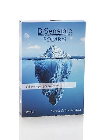 Polaris Bild Verpackung.jpg