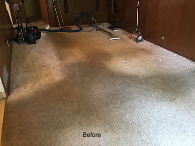 soiled carpet before cleaning