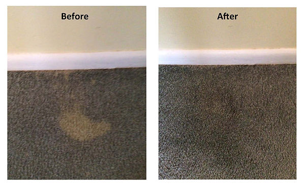 Carpet bleach spot correction.jpg