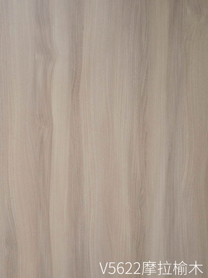 V5622 摩拉榆木