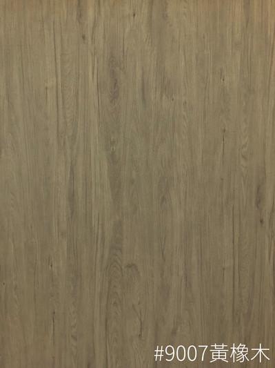 #9007 黃橡木