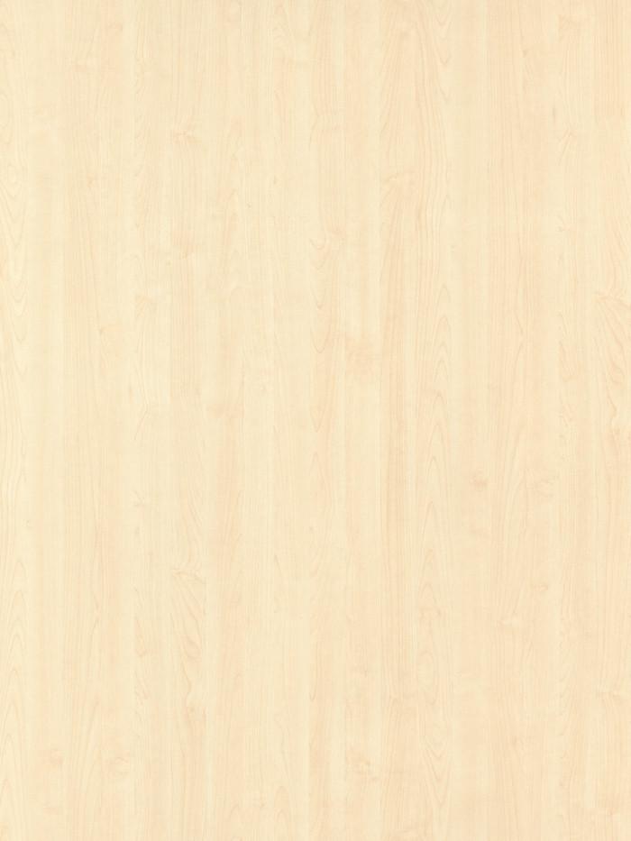 #5362 北美楓