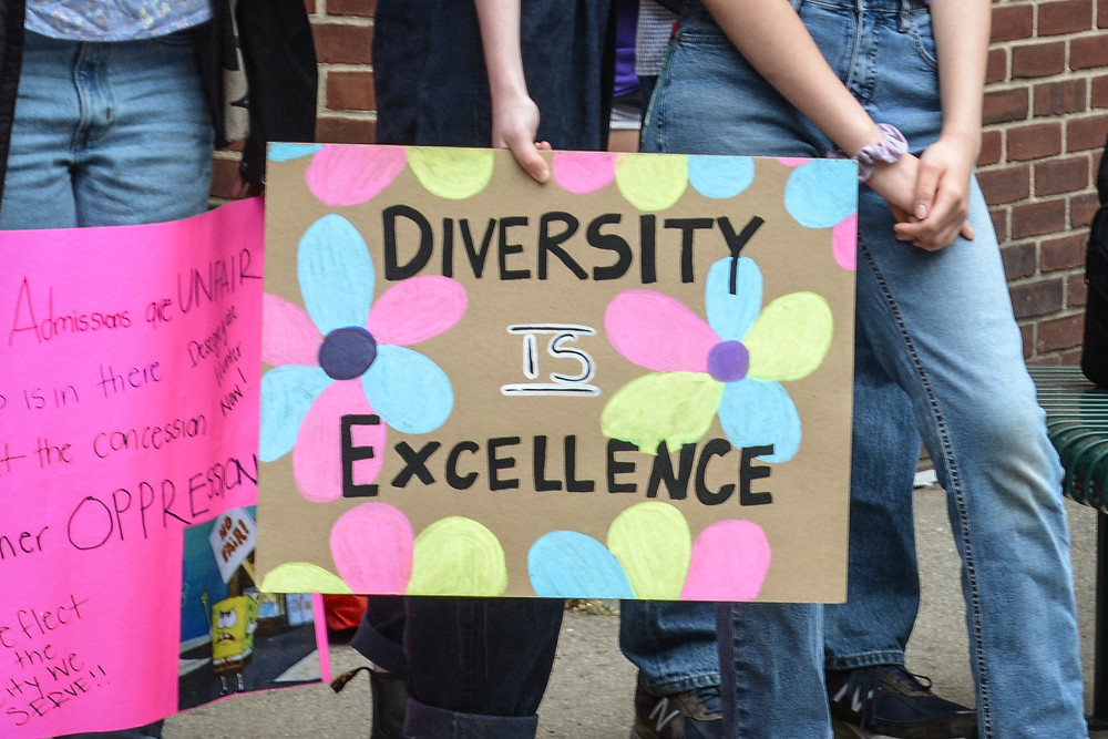 """Image depicts a sign that says """"Diversity is Excellence."""""""