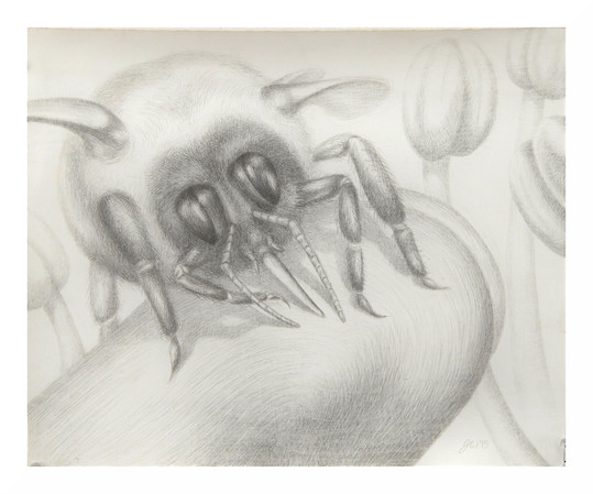 bee in silverpoint