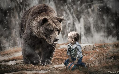 brown_bear_vic_leon.jpg
