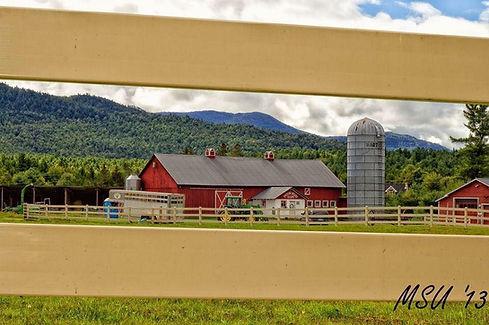 moon valley farm.jpg