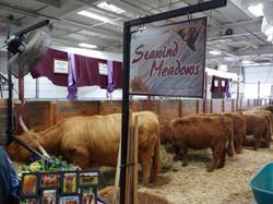 Seawind Meadows Farm, LLC