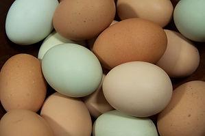 Eggs! PC: Berrien Family, Thank you!