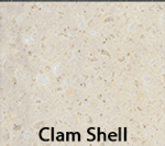 Clam Shell.png
