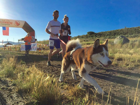 2018 Park City Trail Series 10K
