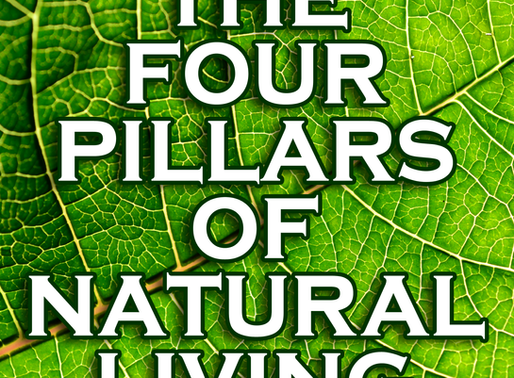 The Four Pillars of Natural Living