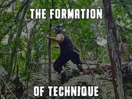 The Formation of Technique