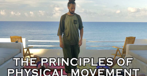 Principles of Physical Movement