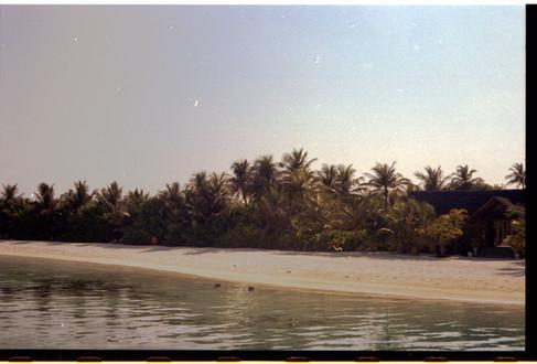 Image 14 (105) 2.jpg
