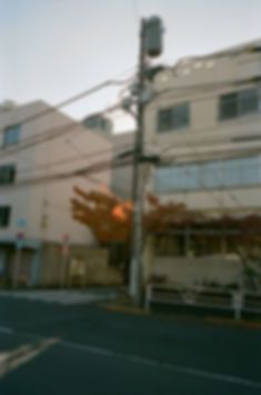 thecity-6.jpg