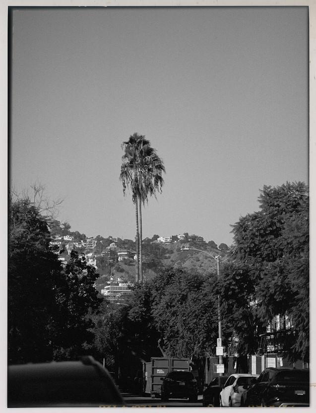 LA - October 2019