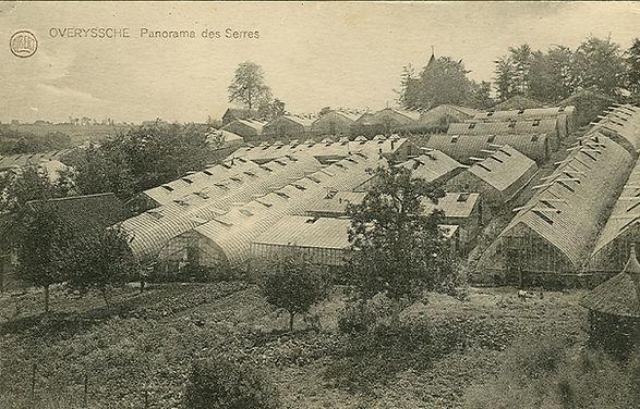 0361-Serres-Gebroeders-Danhieux-in-Scheidhaagstraat.jpg.jpg