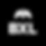 BXL_logo_black.png